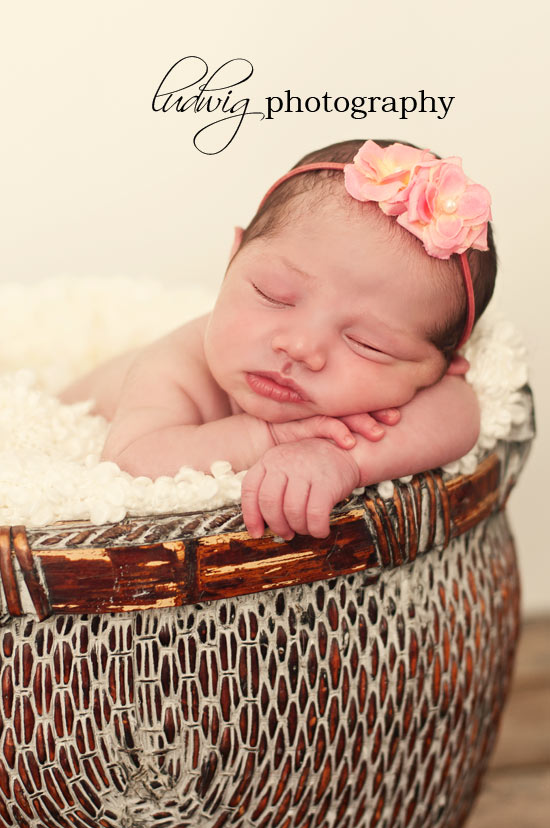 newborn baby in basket portrait