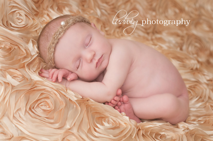 golden portrait of newborn