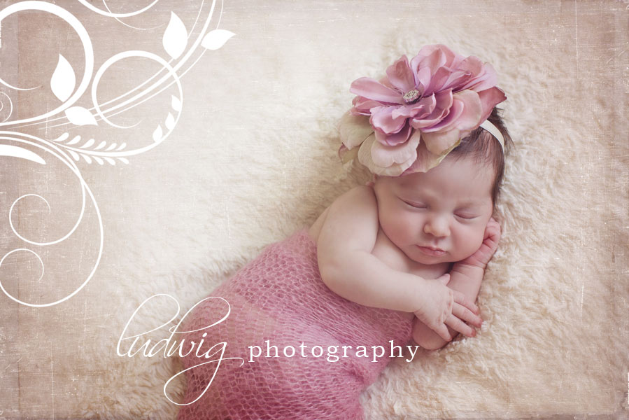 Newborn Photography Ri