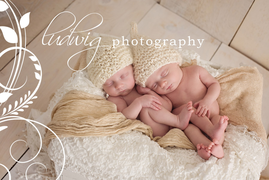 RI newborn twin photographer