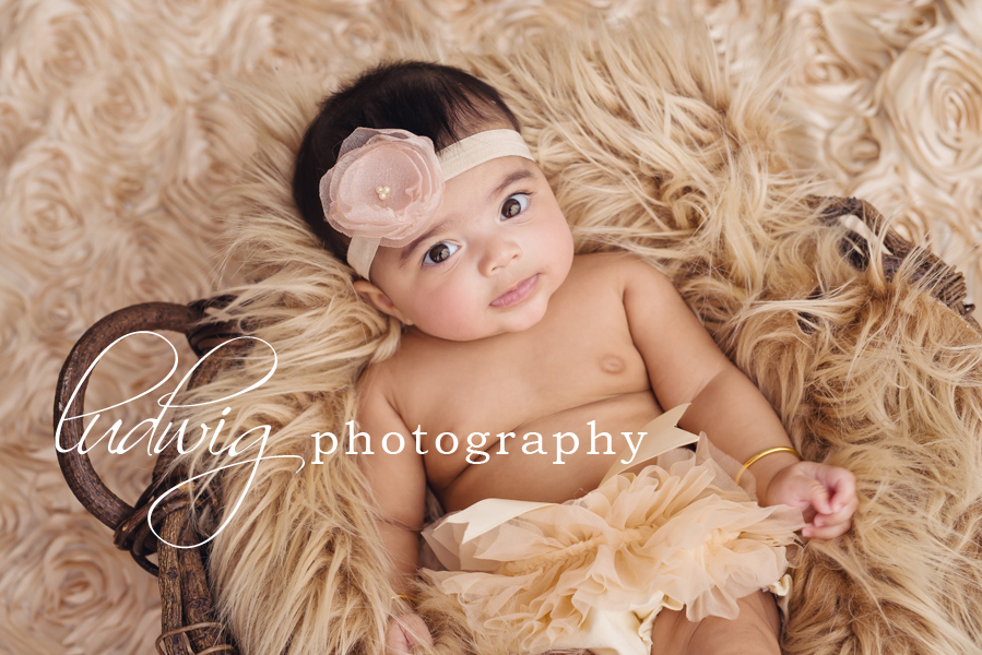 4 month old baby girl photo session  RI baby photographer