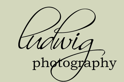 Ludwig Photography Blog logo